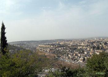 Єрусалим. Гетсиманський сад, Храмова гора